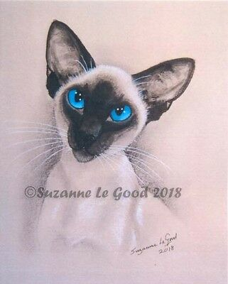 Siamese cat art print large Ltd edition from original painting Suzanne Le Good