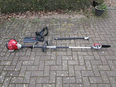 Grizzly Petrol Pole Chain Saw 2.0 metres + pole extension to 2.7 metres total