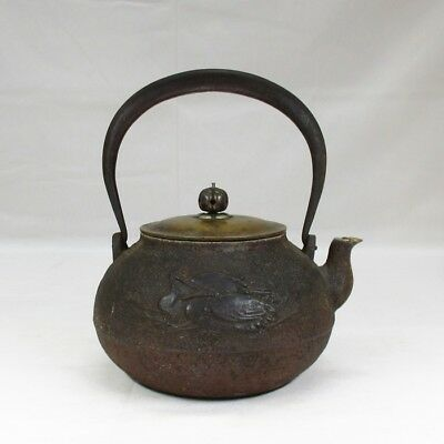 F847 Japanese old iron kettle TETSUBIN w/relief pattern of pine needle and birds