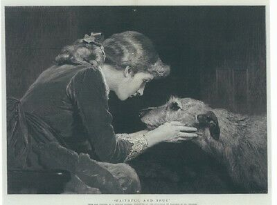 Irish Wolfhound Print, Faithful and True
