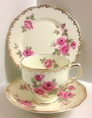 "Lovely Salisbury English Bone China Trio ""Dijon "" Pattern"