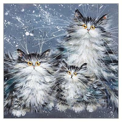 Funny Cat Greeting Card Kim Haskins Humorous Greetings Cards Fluffy Tabby Family