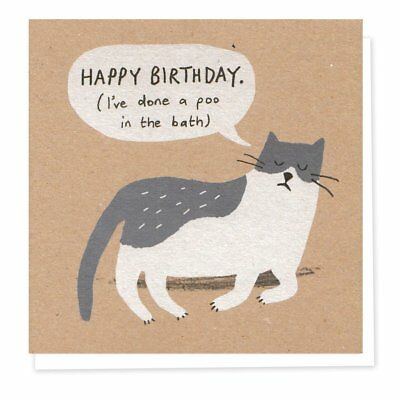 Funny Grey Cat Birthday Card Rude Naughty Cat Lovers Humorous Greetings Cards