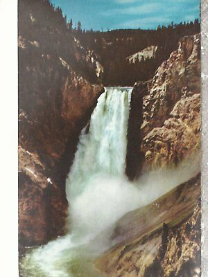 The Lower Falls  of Yellowstone River  Chrome Postcard 2228
