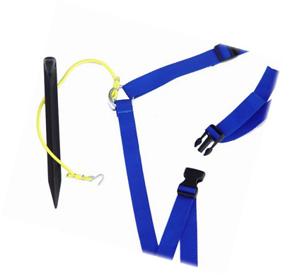 """Park & Sun Sports Adjustable Outdoor Volleyball Boundary Webbing, Blue (1"""" wide)"""