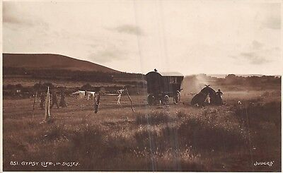 POSTCARD    SOCIAL   HISTORY  SUSSEX   GYPSY  Life   RP    JUDGES