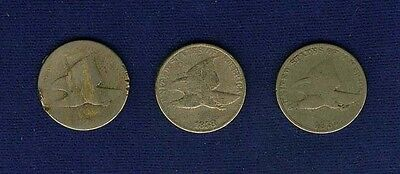 U.s.  1857 & 1858  Small Cent Coins, Group Lot Of (3) Coins!
