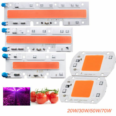 1 X Full Spectrum LED Grows Light LED COB Chip For Hydroponic Greenhouse Plant