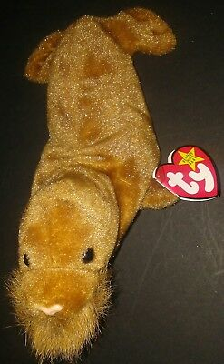 Ty Beanie Babies Paul The Walrus Dob 2-23-1999 W/tags Great Condition New