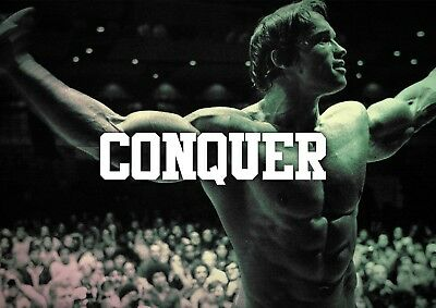 Arnold Schwarzenegger Gym Motivational Poster Print Picture A4 A3 Bodybuilding
