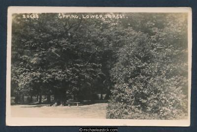 Epping, Lower Forest Postcard