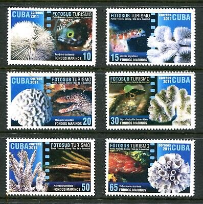 Thematic 2011 Tourism. Marine National park MNH