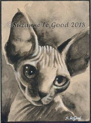 ACEO Devon Rex Sphynx cat art painting original hand painted by Suzanne Le Good
