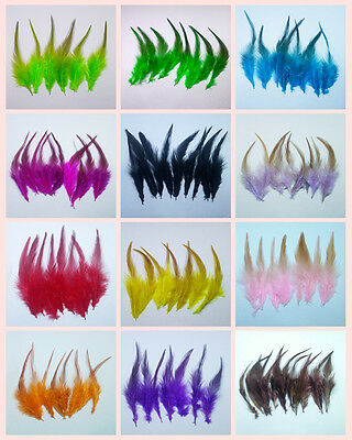 Beautiful 50pcs/100pcs rooster tail feathers 10-15cm / 4-6inch 14 Colors