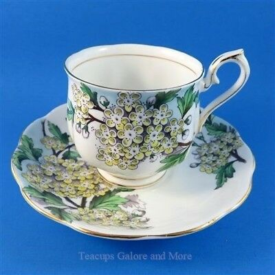 Royal Albert Painted Flower of The Month Hawthorn #5 Tea Cup and Saucer