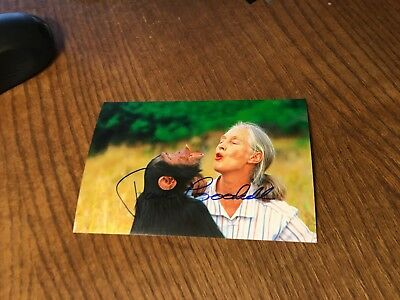 Jane Goodall Signed 4X6 Photo! Autograph Pioneer Researcher Chimps Authentic 1