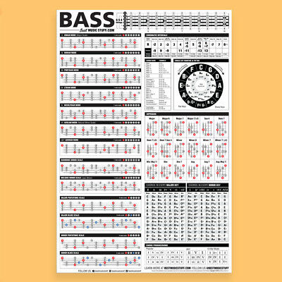 "The Essential Bass Theory Poster 24""x36"""