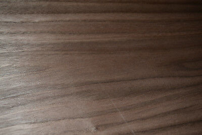 Walnut Raw Wood Veneer Sheets 12 x 41 inches 1/42nd  thick Blemished   D8706-20