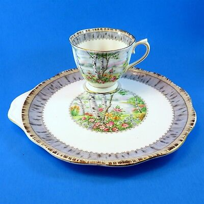 Royal Albert Silver Birch Tea Cup & Saucer Snack Set (different stamps)