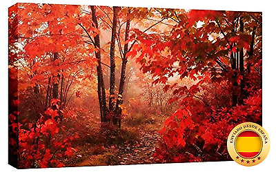 LARGE AUTUMN FOREST CANVAS PICTURE mounted and ready to hang 34 x 20 inches (86