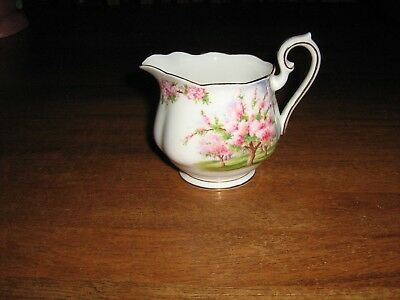 Royal Abbert Fine China Made In England Blossom Time Milk Jug. Mint Condition.