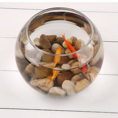 Clear Crystal Glass Bowl Clear Sphere Vase Fish Tank Water