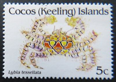 cocos islands singles The only airport is cocos (keeling) islands airport with a single 2,441 m  the keeling islands, the cocos–keeling islands, cocos refers to the abundant coconut .