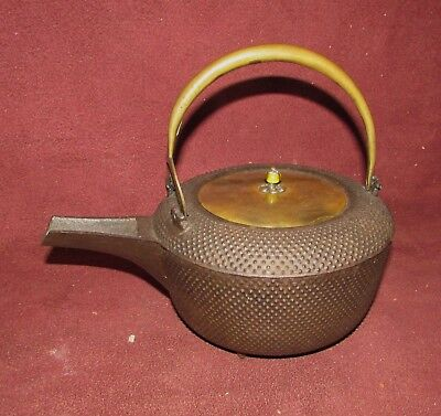 Antique Japanese Iron Saki Teapot