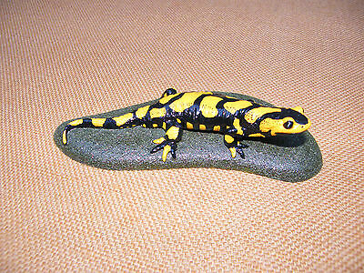 Fire salamander  European  Amphibians  Reptiles  Artificial  Reproduction Resin