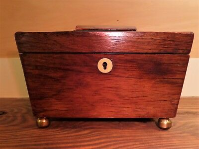 19C England Mahogany Sarcophagus Tea Caddy Box Two Sections Brass Feet