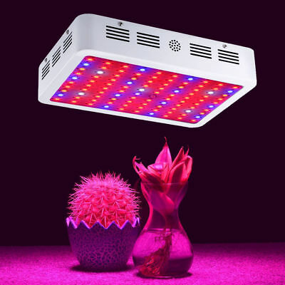 600W/1000W/1200W/2000W Double Chip LED Grow Light Full Spectrum For Indoor Plant