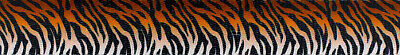 Country Brook Design® 1 Inch Bengal Tiger Stripes Polyester Webbing, 50 Yards