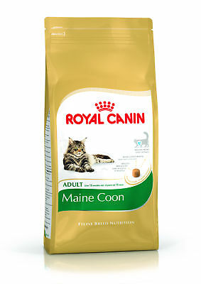 Croquettes Royal Canin Maine Coon 31 Sac 10 kg