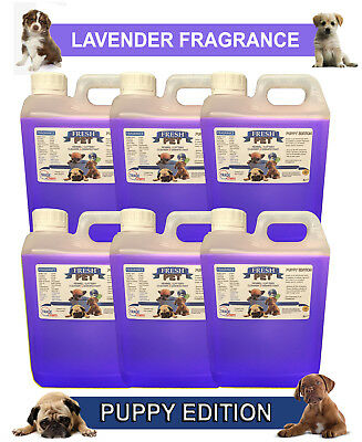 6 x 2L FRESH PET LAVENDER Kennel Dog Disinfectant PUPPY EDITION