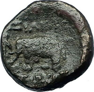 ANTIOCHOS III the GREAT - Rare R1 Ancient Greek SELEUKID Coin ELEPHANT i68667