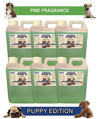 6 x 2L FRESH PET PINE Kennel Dog Disinfectant PUPPY EDITION