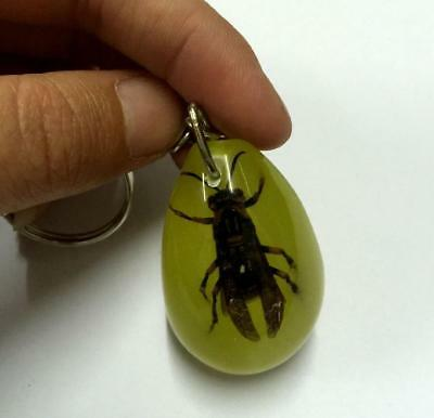 Vintage jewelry real cool bee keychain