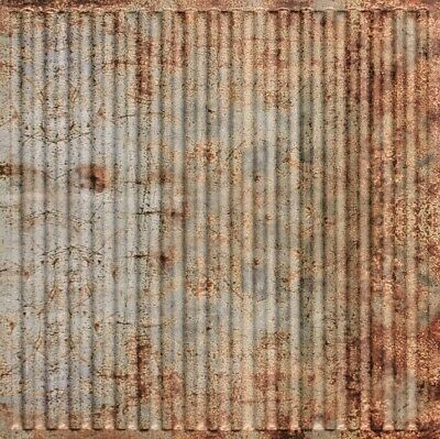 Faux Old Tin Roof PVC Decorative Ceiling Tile 2' x 2' (Lot of 25) #261 Drop-in