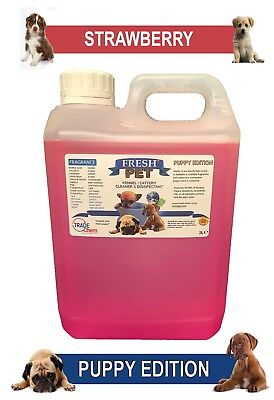 Fresh Pet Pet Disinfectant Cleaner Puppy Edition - 2L Strawberry