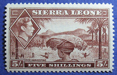 1938 Sierra Leone 5S Scott# 183 S.g.# 198 Unused Cs08013