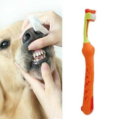 Three Sided Pet Dog Cleaning Brush Dog ToothBrush Teeth Care Cat Cleaning TR