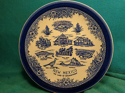 "Vtg 9 -3/8"" NEW MEXICO Tucumcari Shiprock Road Runner Old Town Yucca State Plate"