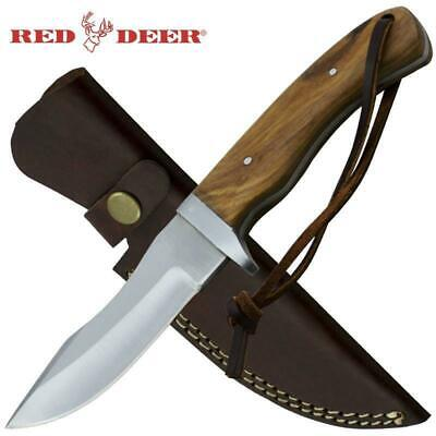 """8.5"""" Red Deer Full Tang Brown Pakka Wood Hunting Knife with Leather Sheath"""