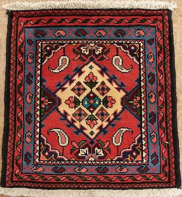 2 x 2 Persian HAMEDAN Hand Knotted Wool RED BLUE IVORY Oriental Area Rug