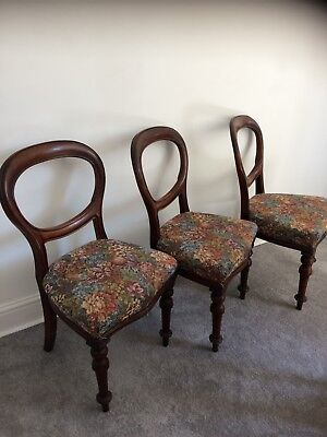 3 Antique Victorian Mahogany Balloon-Back Chairs - 3 Dining Chairs