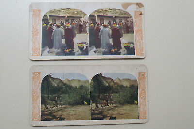 Stereoview Cards (2) - Arabia - Color
