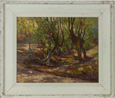 Charles Walter Harvey (1895-1979) - Early 20th Century Oil, Woodland Landscape