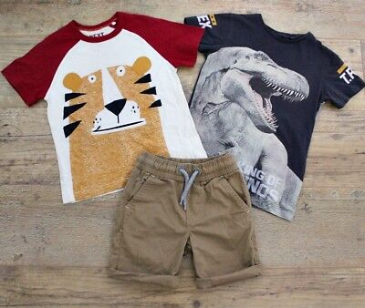 100% Next Boys Summer Spring Bundle Outfit Dinosaur T-Shirt Top Shorts Age 4-5 Y