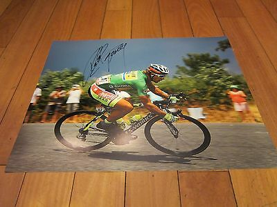 PETER SAGAN signed 16x20 PHOTO Tinkoff TOUR DE FRANCE UCI World Champion  PROOF ba85e6506