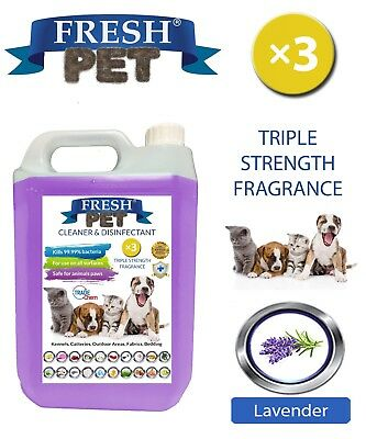 Fresh Pet Kennel Dog Disinfectant Triple Strength Fragrance - 5L Lavender